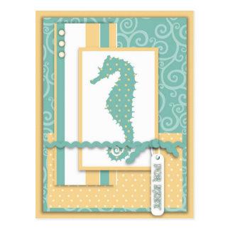 Seahorse Baby Postcard