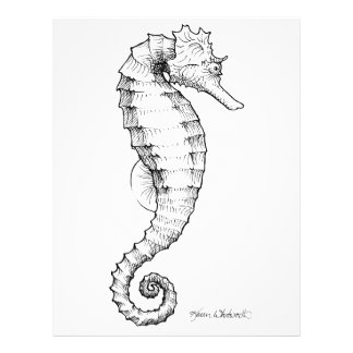 Seahorse Black and White Drawing Letterhead