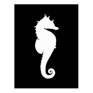 Seahorse blanco y negro tarjeta postal