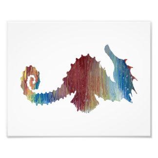 Seahorse Cojinete