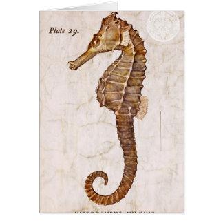 Seahorse de la criatura del caballo de mar del felicitaciones
