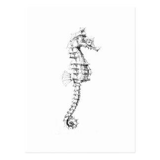 Seahorse de Pointilism Tarjetas Postales