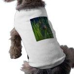 Seahorse del dragón camiseta de perrito