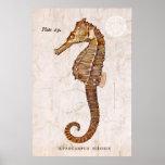 Seahorse del vintage - Seahorses antiguos modifica Impresiones