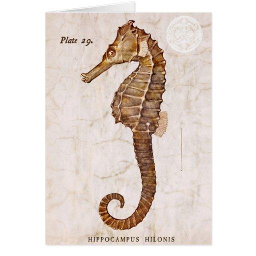 Seahorse del vintage - Seahorses antiguos modifica Felicitación