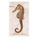 Seahorse del vintage - Seahorses antiguos Plantillas De Tarjeta De Negocio