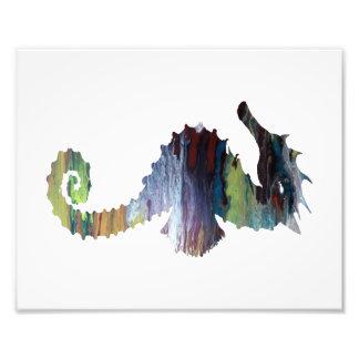 Seahorse Fotografía