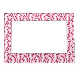 Seahorse Frolic Magnetic Frame - Pink