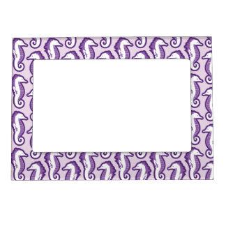 Seahorse Frolic Magnetic Frame - Purple