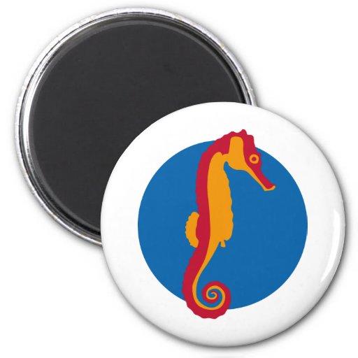 Seahorse - hippocampus imanes de nevera