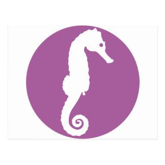 Seahorse - hippocampus post card