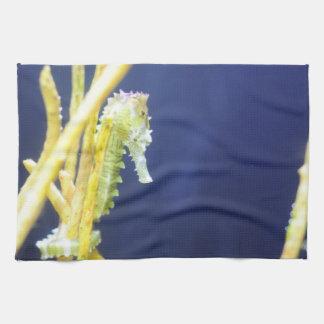 Seahorse Towel