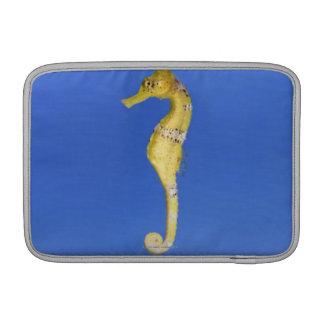 Seahorse MacBook Sleeve