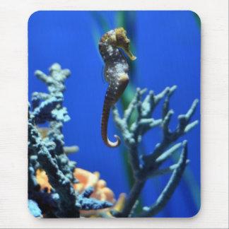 Seahorse Magic Mouse Pad