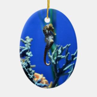 Seahorse mágico adorno navideño ovalado de cerámica