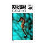 Seahorse Postage