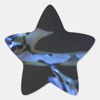 Seahorse Star Sticker