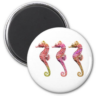 Seahorse Trio in Reds Refrigerator Magnets