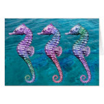 Seahorses on Ocean Background Cards