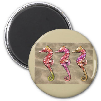 Seahorses on the Sand Magnets