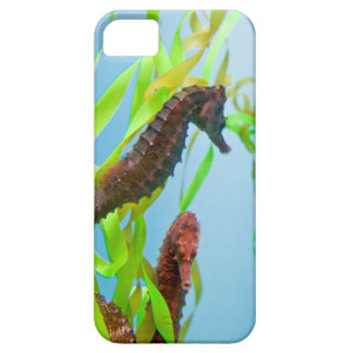 Seahorses phone case iPhone 5 cover