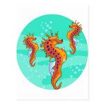 seahorses tarjeta postal