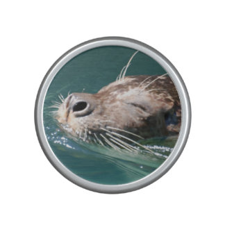 seal-186.jpg speaker