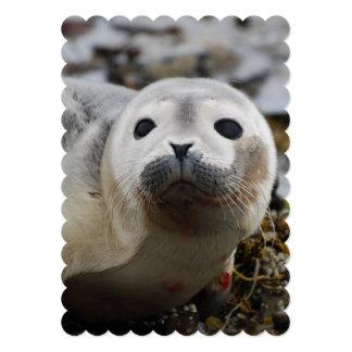 Seal 5x7 Paper Invitation Card