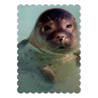 seal-6.jpg 5x7 paper invitation card