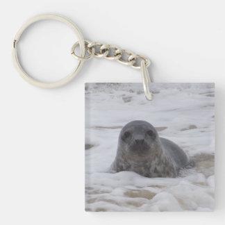 Seal - Animal Image Acrylic Square Keychain