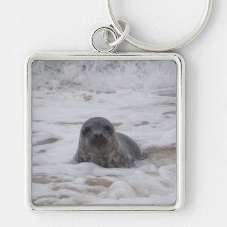 Seal - Animal Image Premium Square Keychain