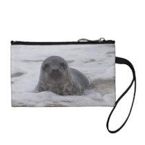 Seal - Animal Photo Print Key Coin Clutch