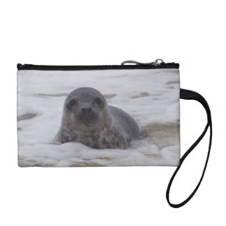 Seal - Animal Photo Print Key Coin Clutch