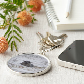 Seal - Animal Print Premium Square Keychain