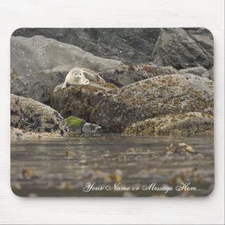 Seal at Peninsula Island Mouse Pad