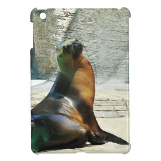 Seal at the zoo iPad mini cover