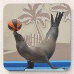 Seal (California Sea Lion) Coaster