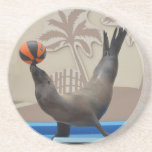 Seal (California Sea Lion) Drink Coaster