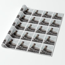Seal Custom background color Wrapping Paper