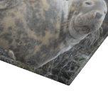 Seal Cutting Boards
