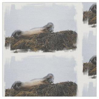 Seal Fabric