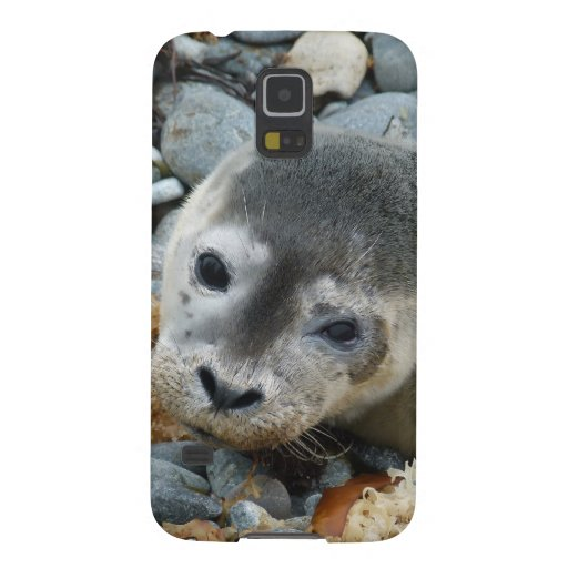 Seal Galaxy S5 Covers