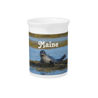 Seal in Casco Bay Maine Beverage Pitcher