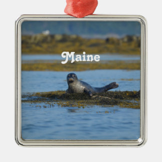 Seal in Casco Bay Maine Metal Ornament