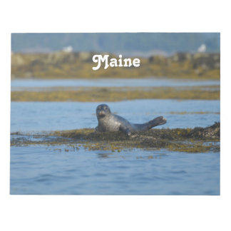 Seal in Casco Bay Maine Notepad