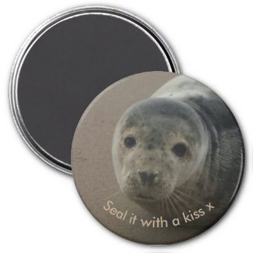 Beach Themed Seal it with a kiss cute baby grey seal magnet