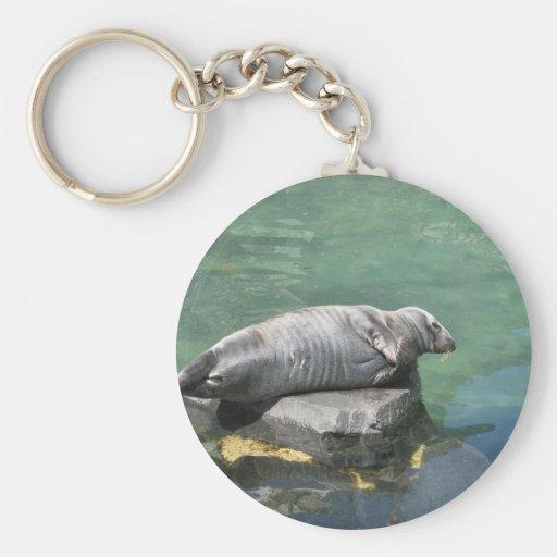 Seal Keychain