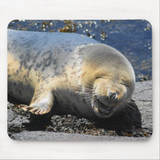 seal laughing, cute giggling seal, cute seal pup mouse pad