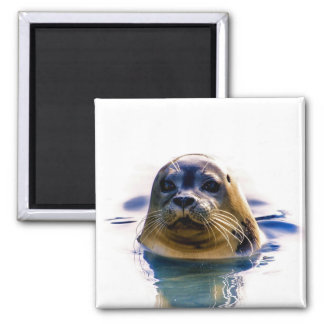 SEAL ME A KISS! REFRIGERATOR MAGNETS