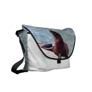 Seal Messenger Bag